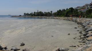 Darıca'da sahil müsilajla kaplandı, denize girmek yasaklandı
