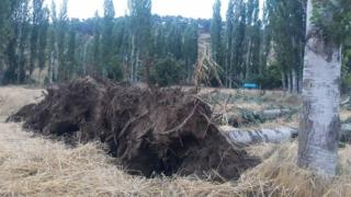 Manisa'da fırtınanın hasarı tespit ediliyor