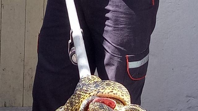 Karabükte eve giren 2 metre uzunluğundaki yılanı itfaiye yakaladı