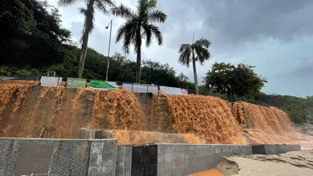 Hong Kongda sel: Aşılama durdu, okullar kapandı