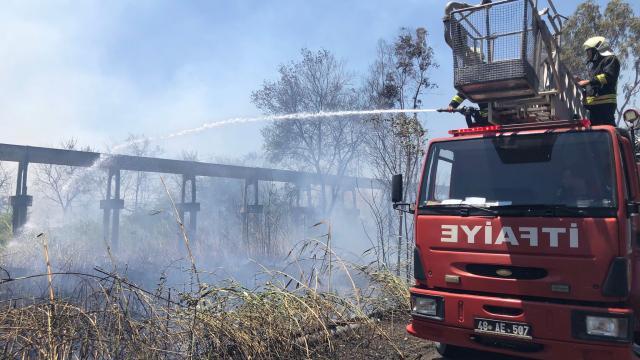 Muğlada orman ve makilik alanda yangın başladı