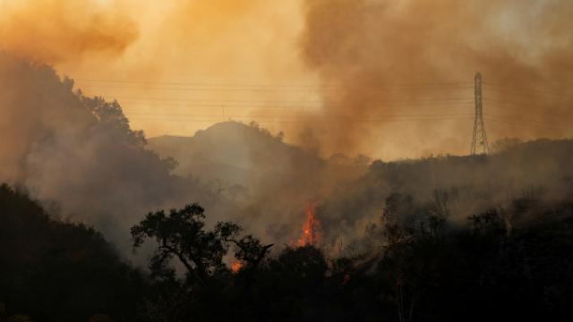 Biden: Orman yangınları tehditleri daha önce hiç olmadığı kadar ciddi
