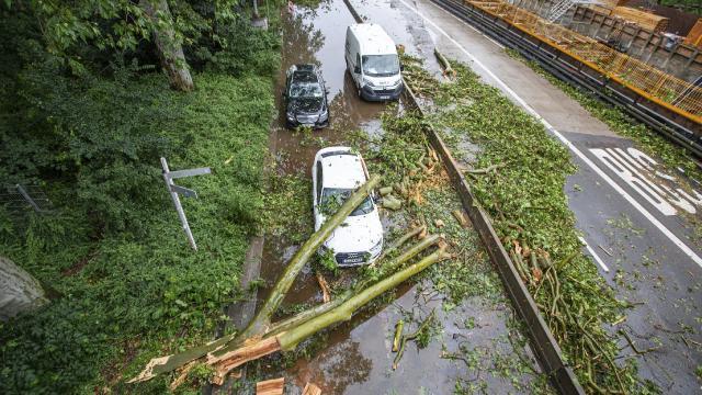Almanyada ağaçlar devrildi, caddeler kapatıldı