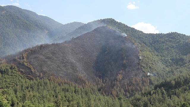 Denizlideki orman yangınının başlangıç noktasında mangal bulundu
