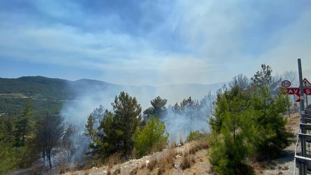 Antalya Aksekide orman yangını