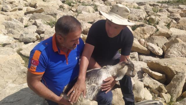 Erzincanda AFAD ekipleri kayalıklarda mahsur kalan oğlak için seferber oldu