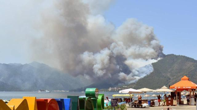 Marmaristeki orman yangınının nedeni enerji nakil hatları
