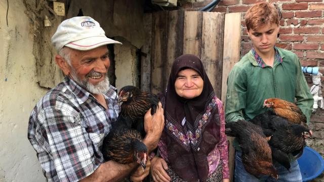 """Kocaelide yürütülen proje kapsamında üreticilere bu yıl 15 bin """"atak-s yarka tavuk"""" dağıtılacak"""
