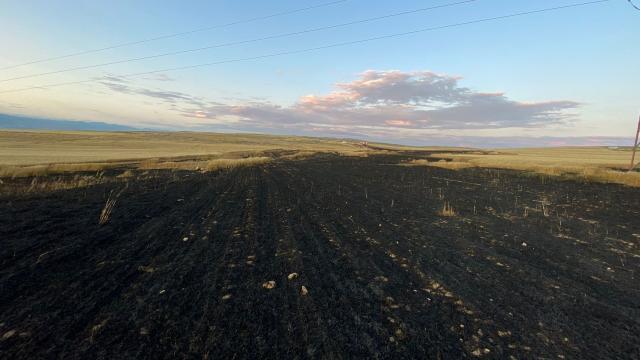 Beypazarı İlçe Tarım Orman Müdürü Korkmaz, yanan tarım arazilerini ziyaret etti