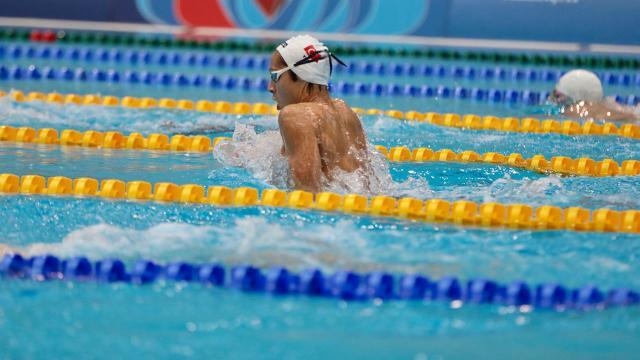 Milli yüzücü Sakadan altın madalya