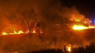Burdur'da sazlık yangını