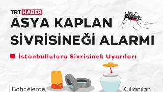 Asya Kaplan Sivrisineği alarmı: Su kaplarının üstü kapatılmalı