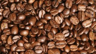 Etiyopya'dan kahve rekoru