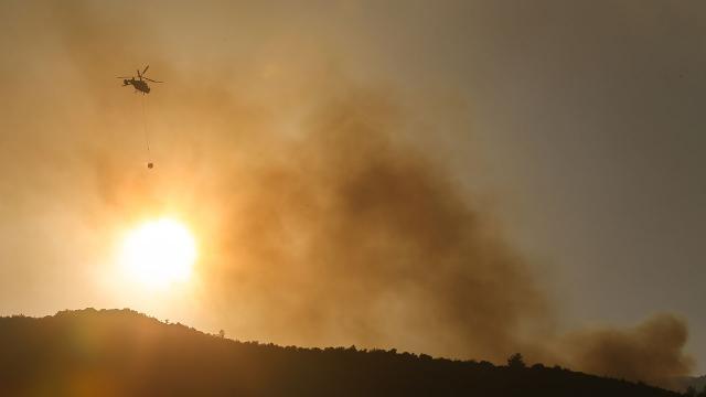 Hatayda dün çıkan orman yangınına müdahale sürüyor