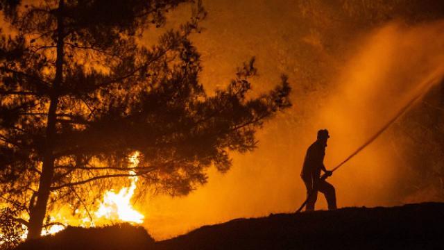 Hatayda orman yangını: Müdahale sürüyor