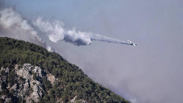 Mersinde orman yangını: Havadan ve karadan müdahale ediliyor