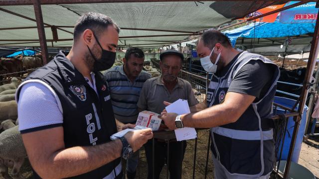 İzmirdeki kurbanlık pazarlarında hareketlilik sürüyor