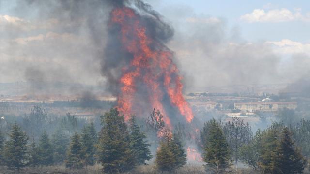 AOÇdeki yangının şüphelisi için istenen ceza belli oldu