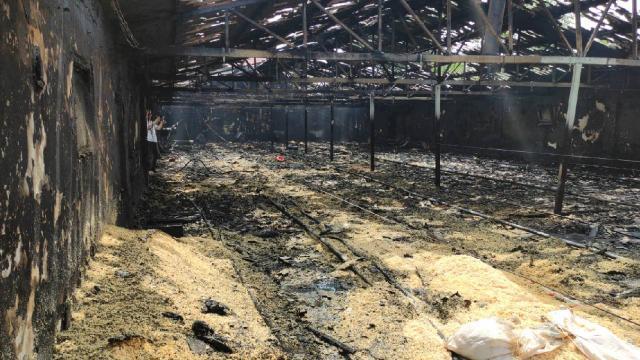 Zonguldakta çiftlik yangını: 12 bin hindi yavrusu telef oldu