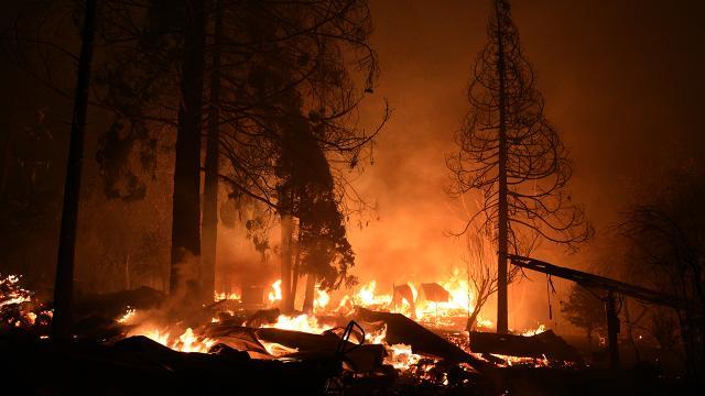 Californiada orman yangınları 21 gündür sürüyor