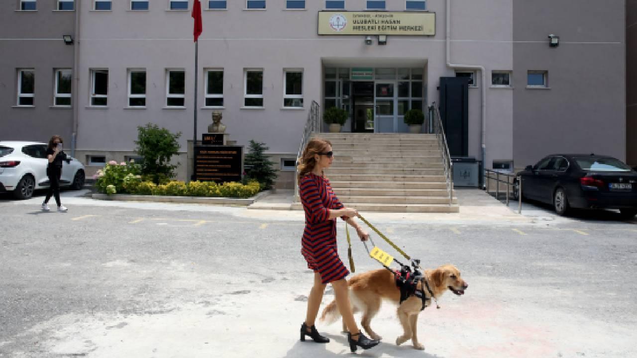 """Görme engelli öğretmen rehber köpeği """"Angel"""" ile daha özgür"""
