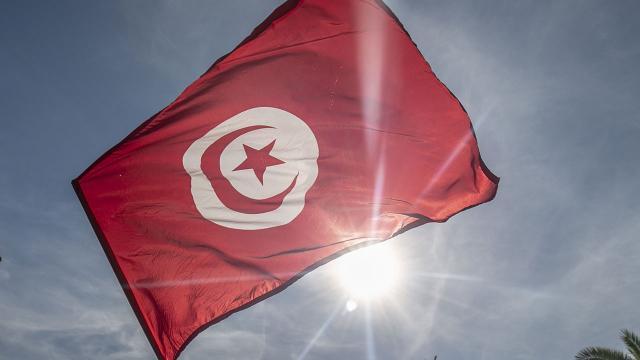 Tunustaki 5 siyasi parti, anayasanın askıya alınmasına karşı