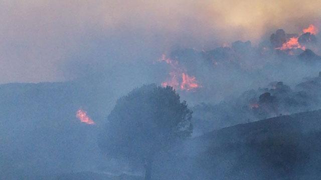 Avşa Adasında yangın