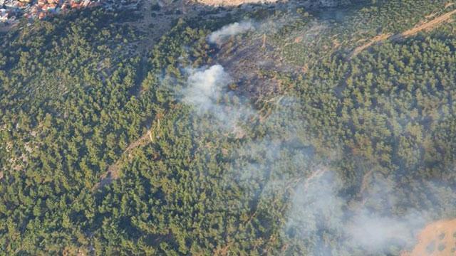 Somada ormanlık alanda yangın