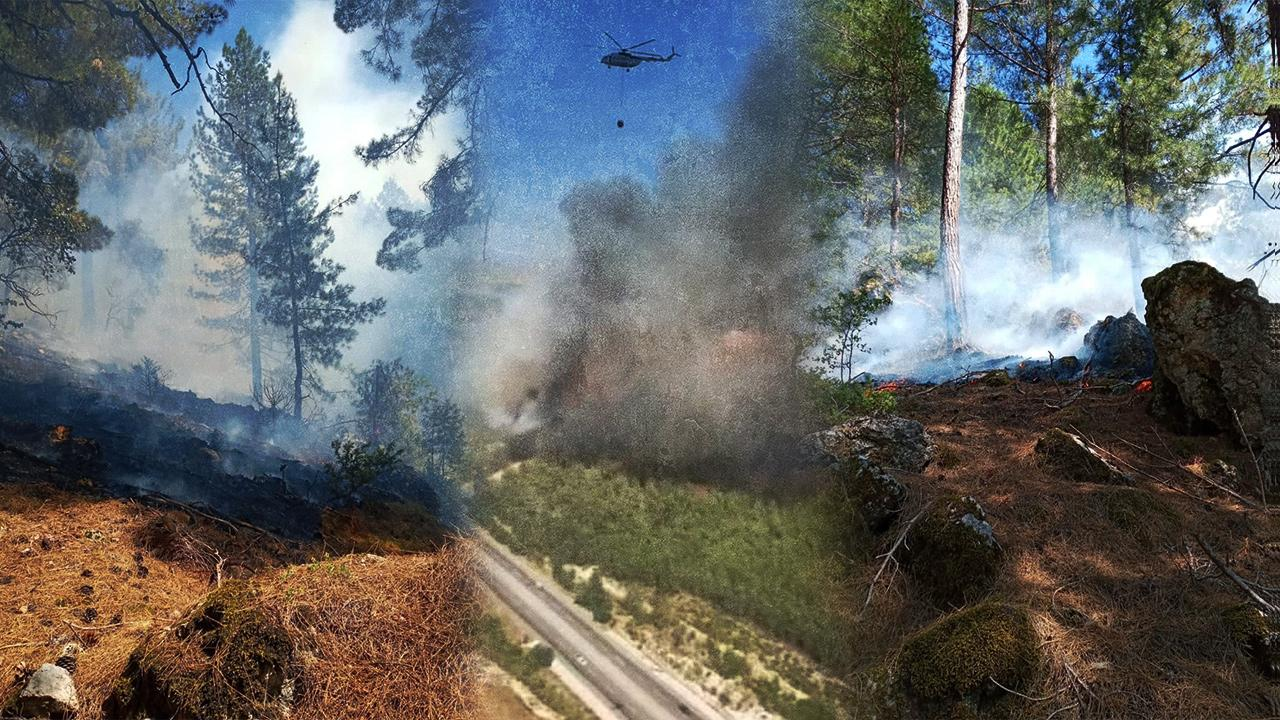 Adana'daki yangınlar kontrol altında