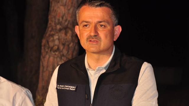 Bakan Pakdemirli: Yangının çıkış nedeni netlik kazanmadı