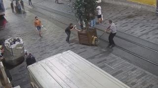 İBB, Beyoğlu Belediyesi'nin yerleştirdiği ağaçları kaldırdı
