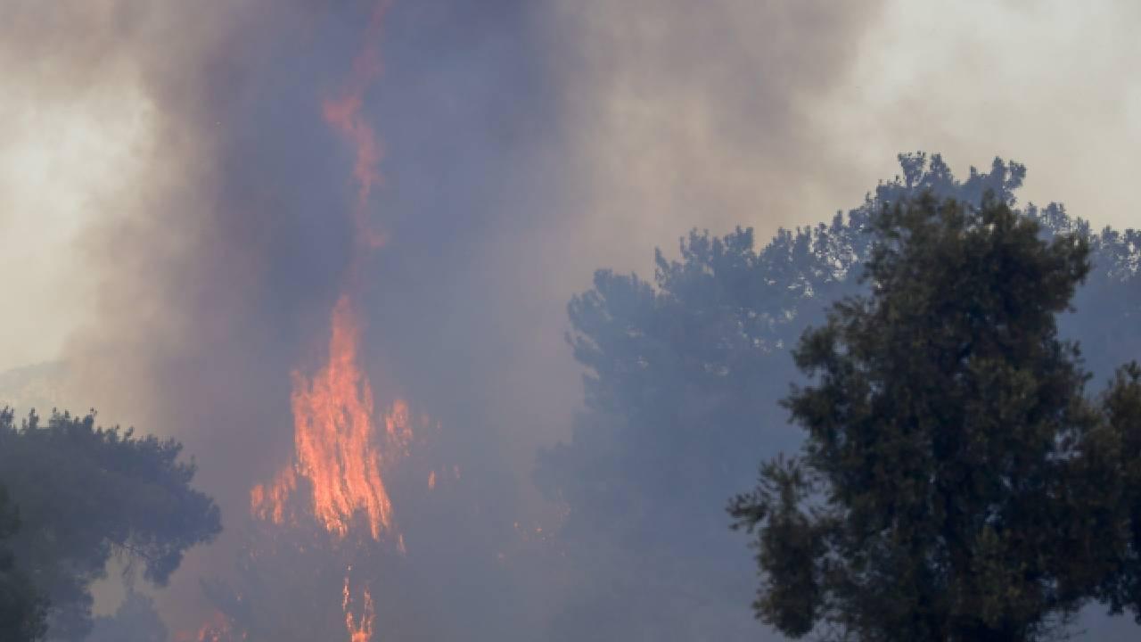 AFAD'dan Manavgat'taki yangınla ilgili açıklama