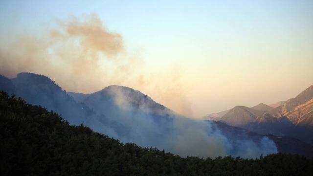 Mersindeki orman yangınlarına müdahale ediliyor