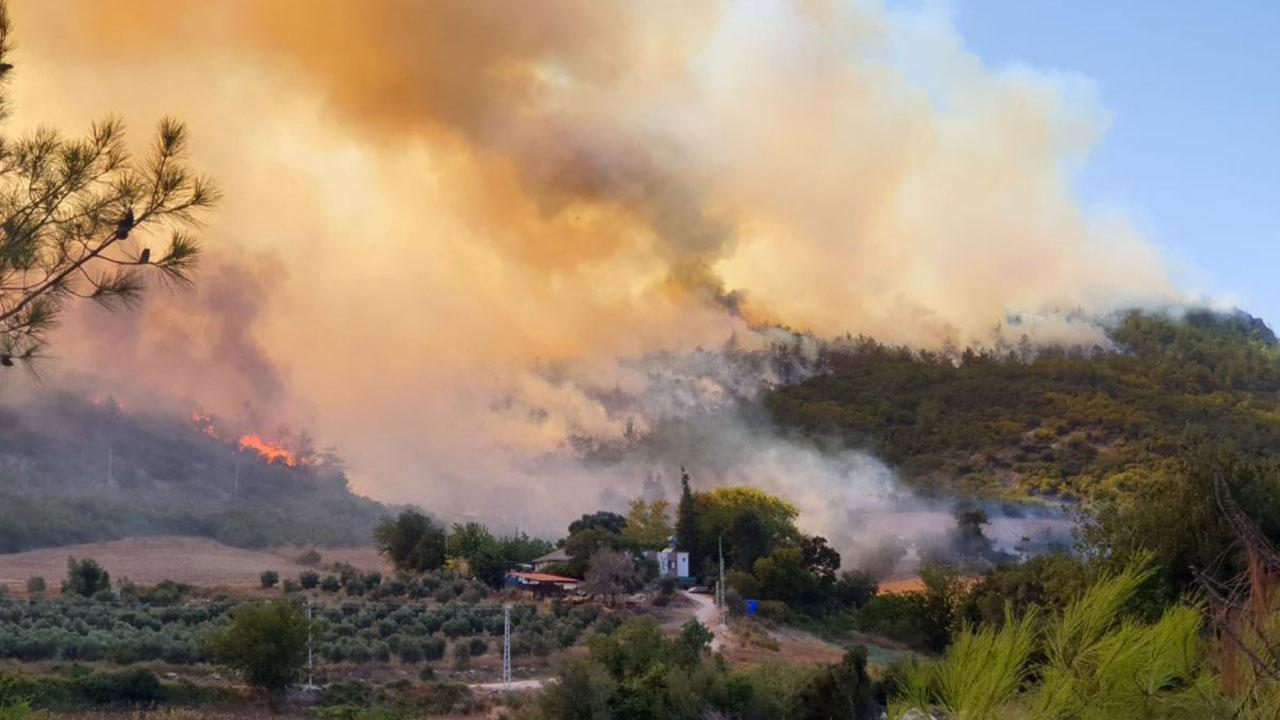 4 ilde daha orman yangını sürüyor