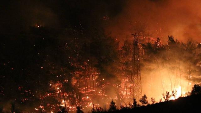 Osmaniyedeki orman yangını kontrol altına alındı