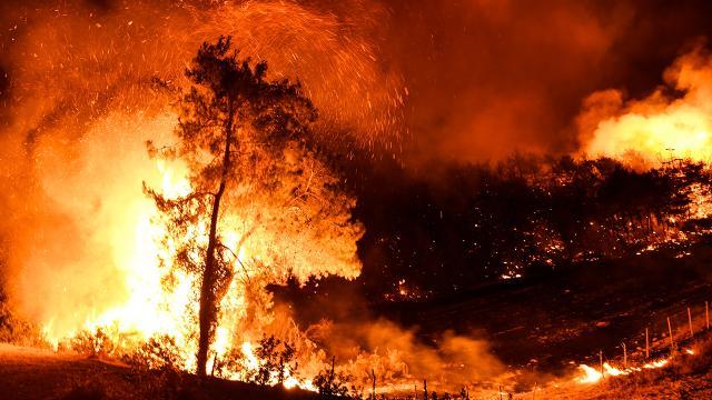 Osmaniyedeki yangınla ilgili 5 gözaltı