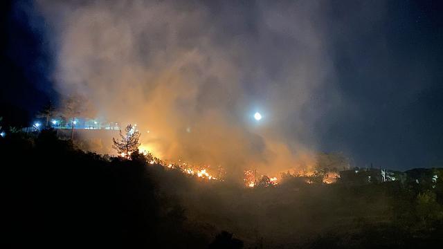 Kahramanmaraş'ta ormanlık alanda yangın