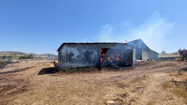 Uşakta ağıl yangını: 55 küçükbaş hayvan telef oldu