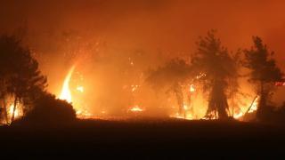 Adana ve Osmaniye'de 23 ayrı noktada orman yangını