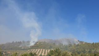 Osmaniye Kadirli'de çıkan orman yangını kontrol altına alınamadı