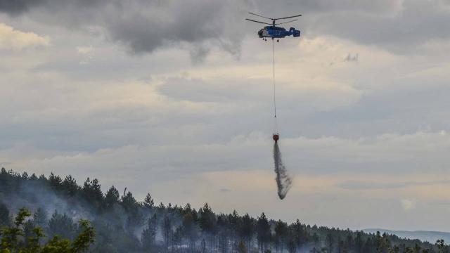 Kastamonuda orman yangını