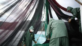 Balık stokları için öncelik su kalitesi