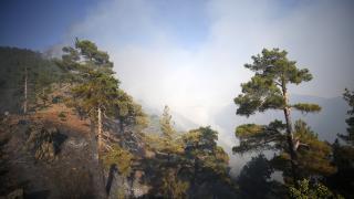 Kayseri'deki yangın kontrol altında