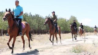 Atlarla hem eğitim hem terapi yapılıyor