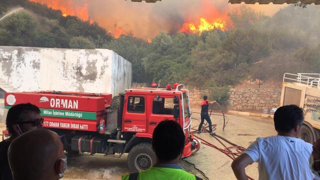 Bodrumda makilik ve ormanlık alanda çıkan yangın kontrol altında