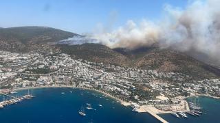 Bodrum'da yine orman yangını çıktı
