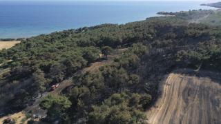 Çanakkale'de ormanlık alan yasağı