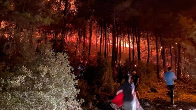 Fethiyedeki orman yangını kontrol altına alındı