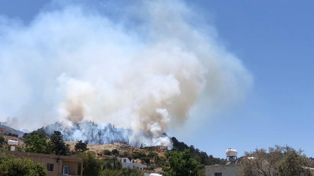 KKTCde ormanlık alanda yangın
