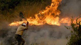 Ciğerimiz yanıyor: Manavgat'ta orman yangını